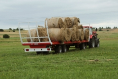 platform-for-transport-bales_T009_back